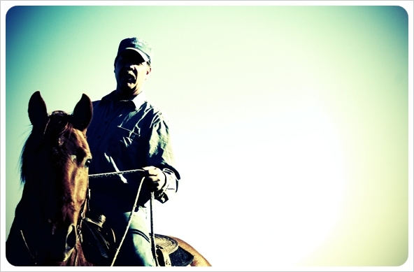 bruce-on-horseback-hero-shot